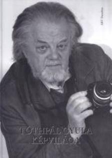 Kulcsár Ferenc - Tóthpál Gyula képvilága