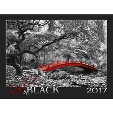 SmartCalendart Kft. - SG Naptár Red in black 2017 56x42cm