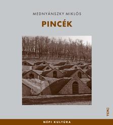 Mednyánszky Miklós - Pincék