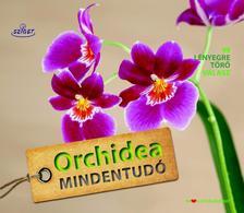 Dr.Folko Kullmann - Orchidea mindentudó