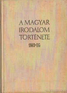 Pándi Pál, Bóka László - A magyar irodalom története 1849-ig [antikvár]