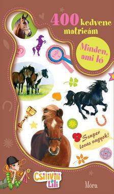 Csilivili Lili matricás könyvek - Minden, ami ló - 400 kedvenc matricám
