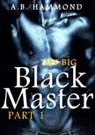 Hammond A.B - My Big Black Master - M/M Submission [eKönyv: epub, mobi]
