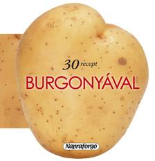 - 30 recept burgonyával ###