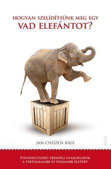 Jan Chozen Bays - Hogyan szelídítsünk meg egy vad elefántot?