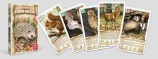 CartaCo kft - 4 az 1-ben / Állatok erdőn, mezőn kártyajáték