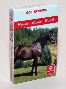 CartaCo kft - 4 az 1-ben / Kedvenceink a lovak kártya