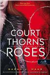 Sarah J. Maas - A Court of Thorns and Roses - Tüskék és rózsák udvara (Tüskék és rózsák udvara 1.)<!--span style='font-size:10px;'>(G)</span-->
