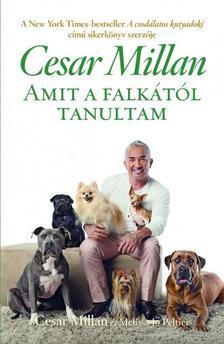 Cesar Millan - Amit a falkától tanultam
