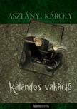 Aszlányi Károly - Kalandos vakáció, Az Északi-park felfedezése [eKönyv: epub, mobi]<!--span style='font-size:10px;'>(G)</span-->