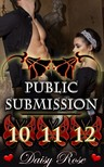 Rose Daisy - Public Submission 10 - 12 [eKönyv: epub,  mobi]