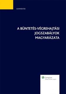 A büntetés-végrehajtási jogszabályok magyarázata [eKönyv: epub, mobi]