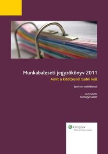 SOMOGYI GÁBOR - Munkabaleseti jegyzőkönyv 2011 [eKönyv: epub, mobi]