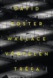 WALLACE, DAVID FOSTER - Végtelen tréfa [eKönyv: epub, mobi]<!--span style='font-size:10px;'>(G)</span-->