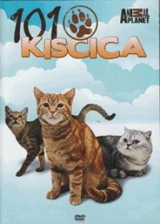 - 101 KISCICA