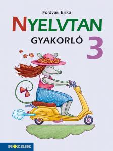 FÖLDVÁRI ERIKA - MS-1638 NYELVTAN GYAKORLÓ 3.