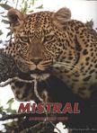 Több szerkesztő - Mistral Jagdreisen 1999 [antikvár]