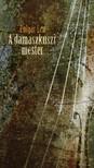 Polgár Lea - A damaszkuszi mester [eKönyv: epub, mobi]