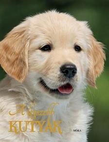 - A legszebb kutyák (2. kiadás)